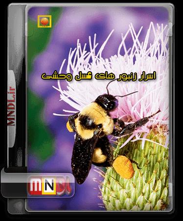 Asrare_Zanburhaye_Asale_Vahshi