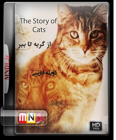 مستند از گربه تا ببر با دوبله فارسی