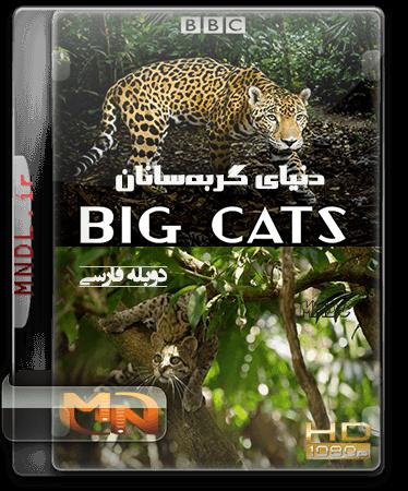 مستند گربه های بزرگ با دوبله فارسی