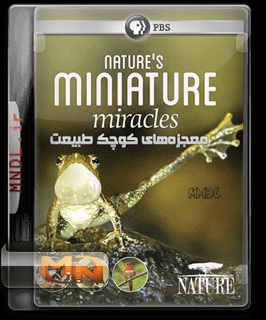 مستند معجزههای کوچک طبیعت با دوبله فارسی