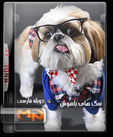 مستند سگ های باهوش با دوبله فارسی