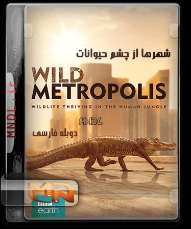 مستند شهرها از چشم حیوانات با دوبله فارسی
