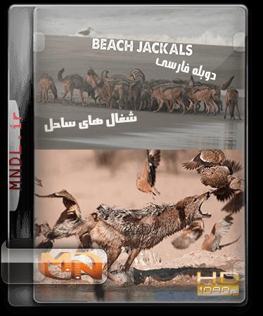 مستند شغال های ساحل با دوبله فارسی