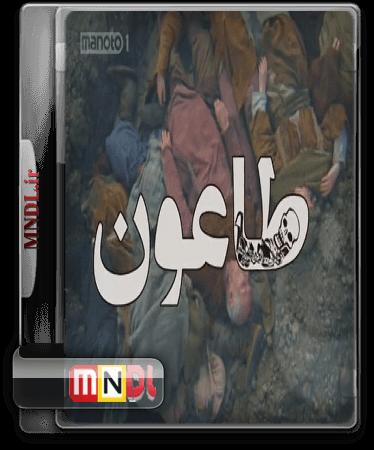 Taun(1)