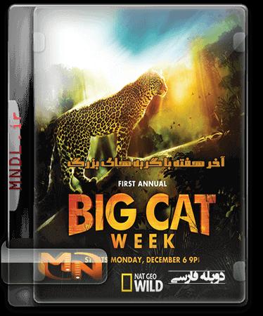 آخر هفته با گربه های بزرگ با دوبله فارسی
