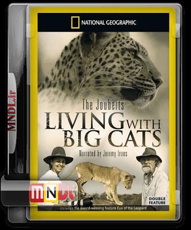 big cats(1)