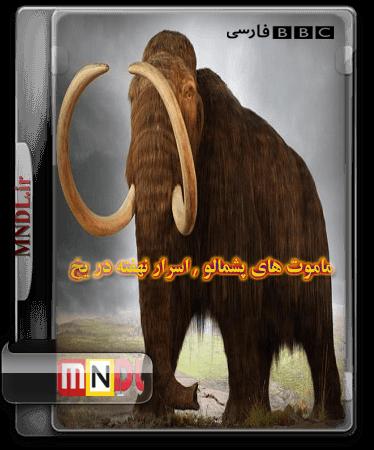 mamut-pashmalu