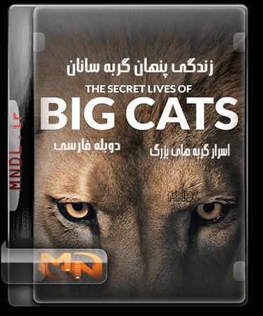 زندگی پنهان گربه سانان با دوبله فارسی